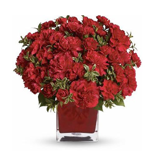 Stunning Red Carnations adorned in a Colorful Cube Vase