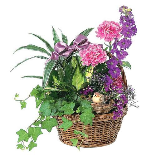 Exquisite Valentine Basket of Mixed Flowers <br>