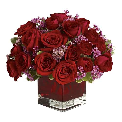 Majestic Red Color Roses placed in a Glass Cube Vase